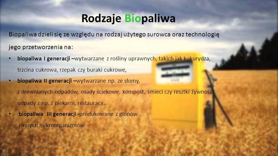 Rodzaje Biopaliwa Biopaliwa dzieli się ze względu na rodzaj użytego surowca oraz technologię jego przetworzenia na: