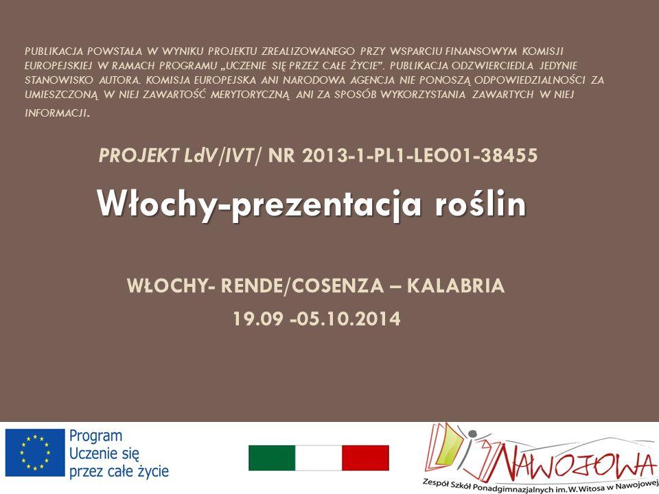 WŁOCHY- RENDE/COSENZA – KALABRIA 19.09 -05.10.2014