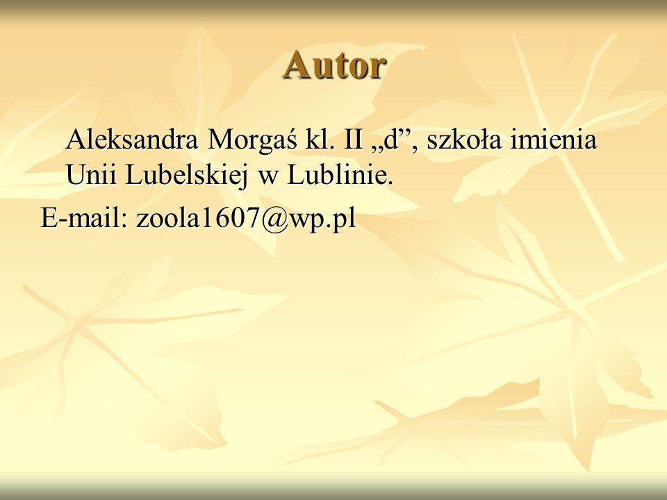 """Autor Aleksandra Morgaś kl. II """"d , szkoła imienia Unii Lubelskiej w Lublinie."""