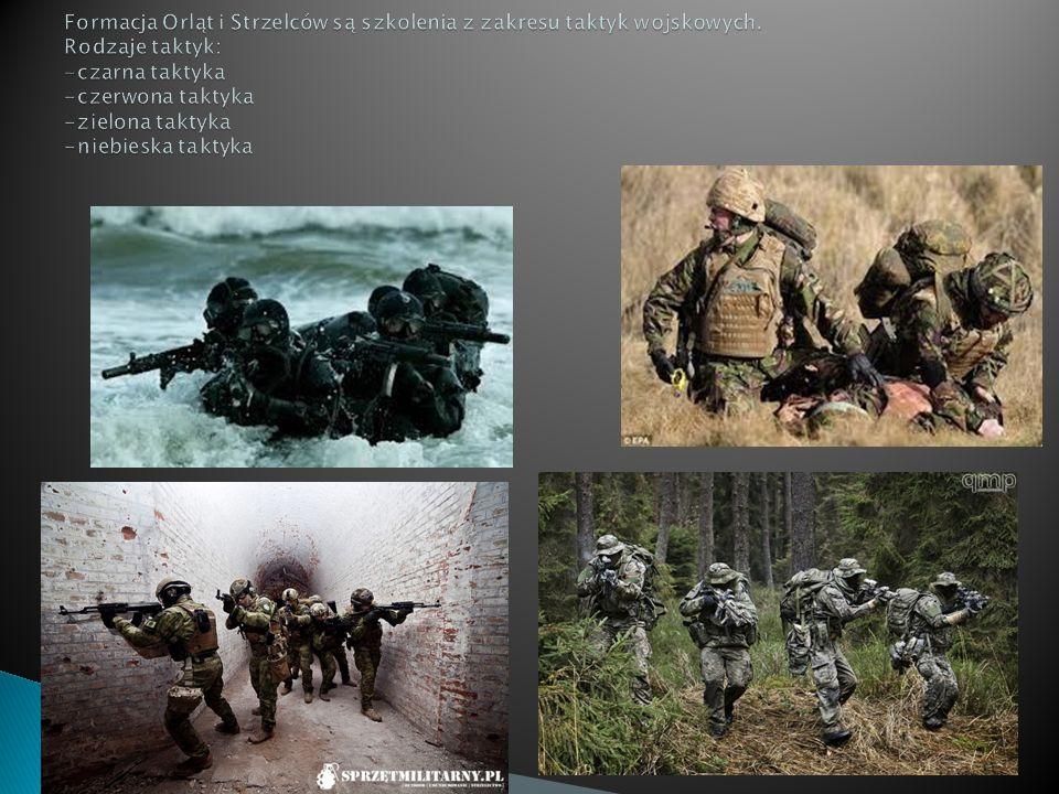 Formacja Orląt i Strzelców są szkolenia z zakresu taktyk wojskowych
