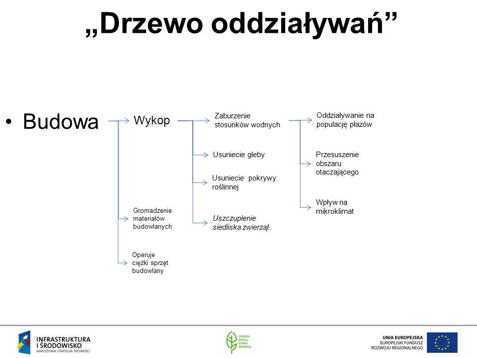 """""""Drzewo oddziaływań Budowa Wykop Zaburzenie stosunków wodnych"""