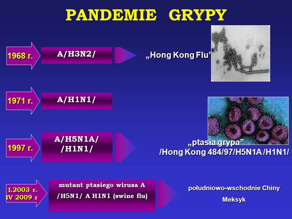 """PANDEMIE GRYPY 1968 r. A/H3N2/ """"Hong Kong Flu 1971 r. A/H1N1/"""