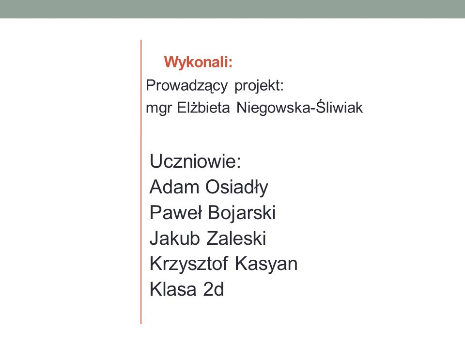 Wykonali: Prowadzący projekt: mgr Elżbieta Niegowska-Śliwiak.