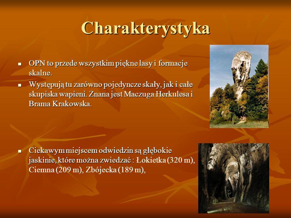Charakterystyka OPN to przede wszystkim piękne lasy i formacje skalne.