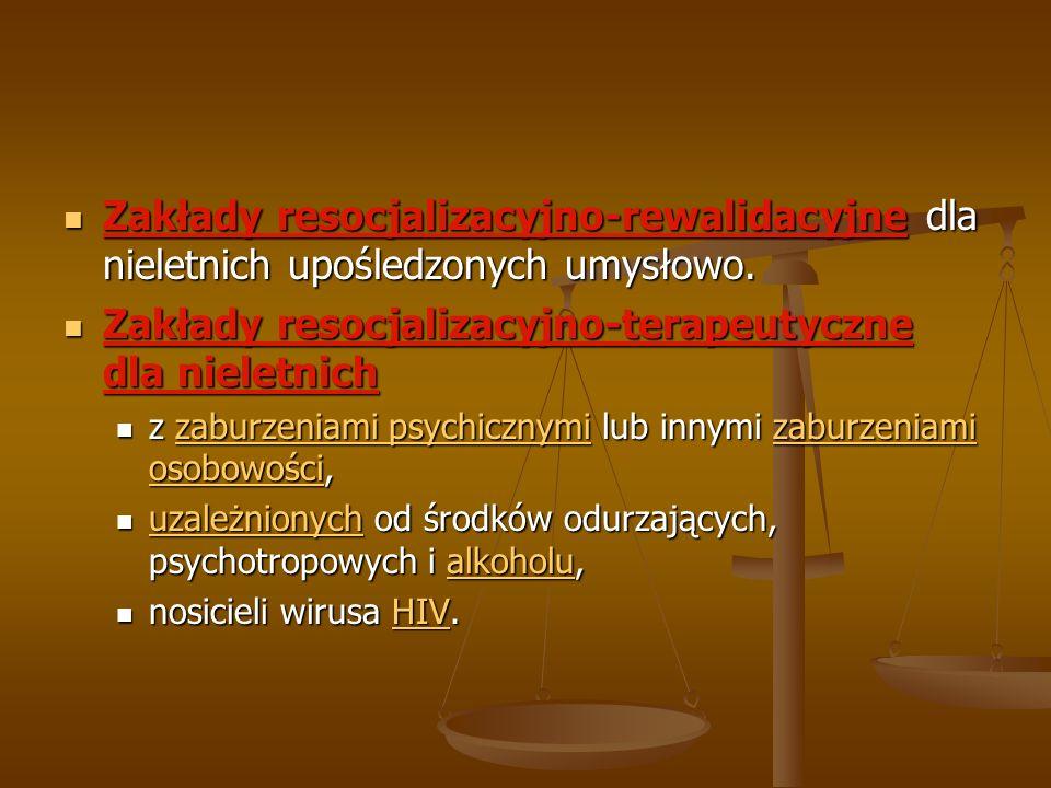 Zakłady resocjalizacyjno-terapeutyczne dla nieletnich