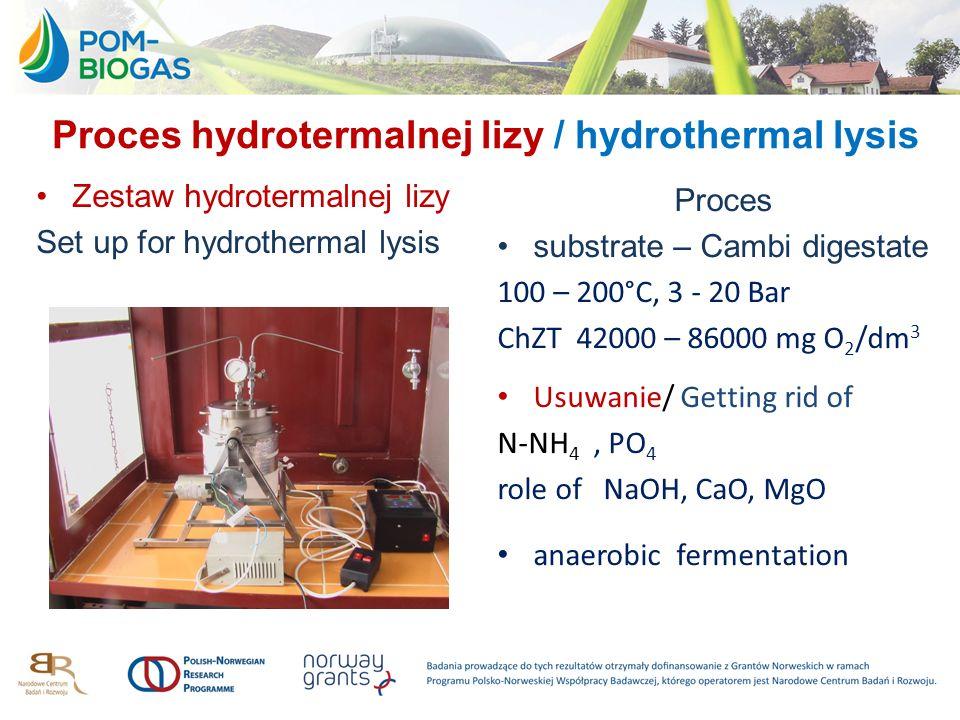Proces hydrotermalnej lizy / hydrothermal lysis
