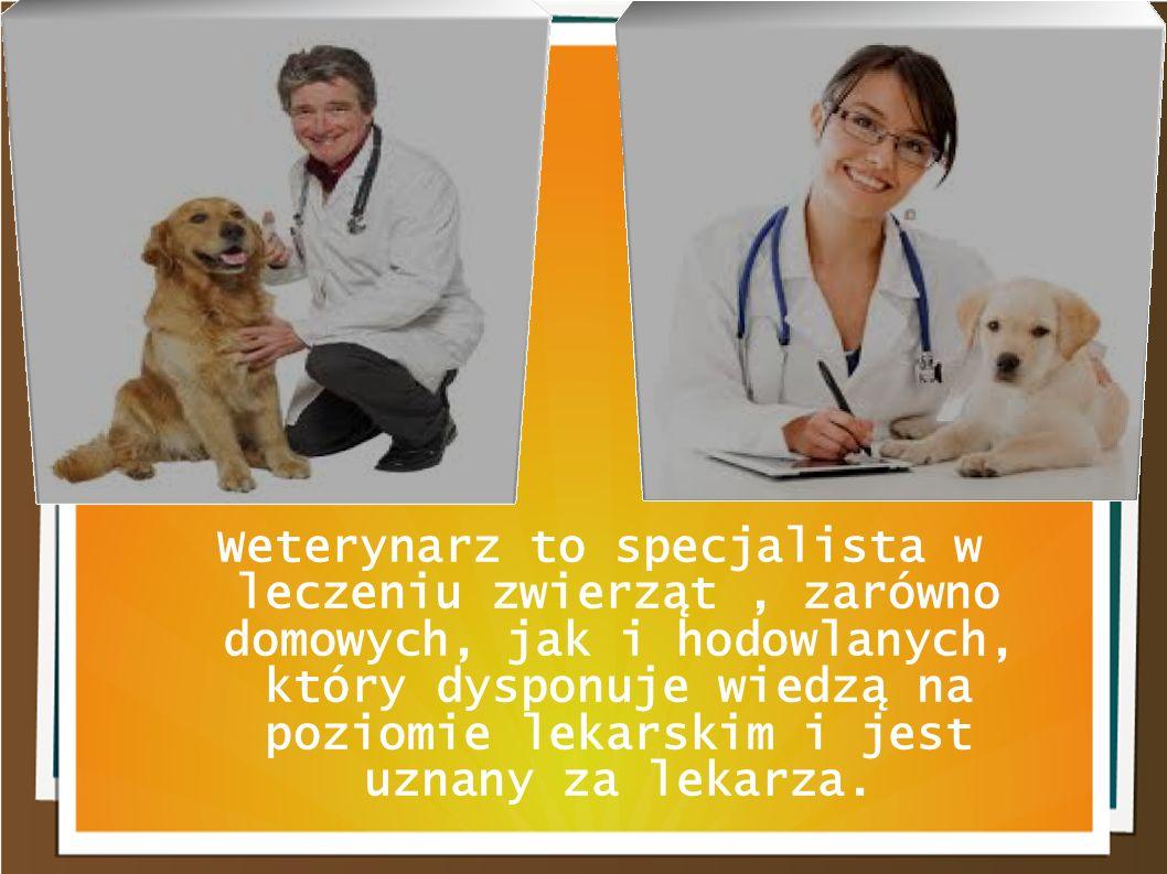 Weterynarz to specjalista w leczeniu zwierząt , zarówno domowych, jak i hodowlanych, który dysponuje wiedzą na poziomie lekarskim i jest uznany za lekarza.