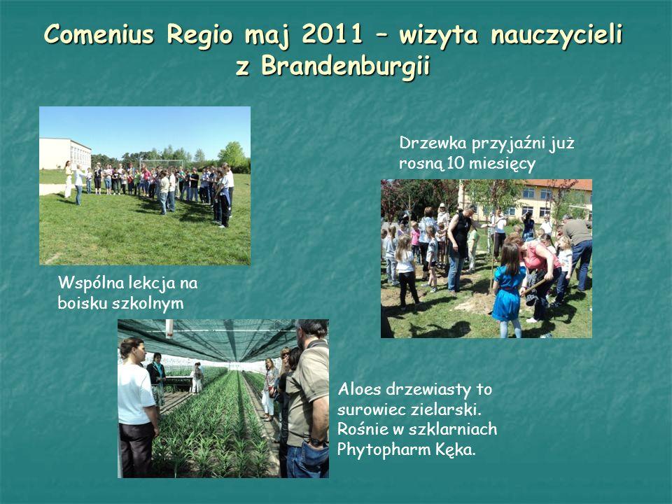 Comenius Regio maj 2011 – wizyta nauczycieli z Brandenburgii
