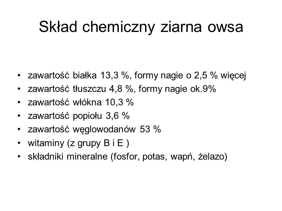 Skład chemiczny ziarna owsa