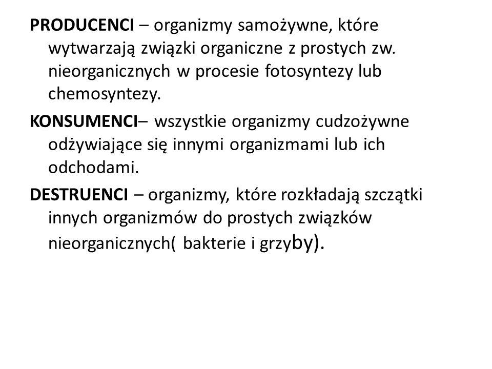 PRODUCENCI – organizmy samożywne, które wytwarzają związki organiczne z prostych zw.