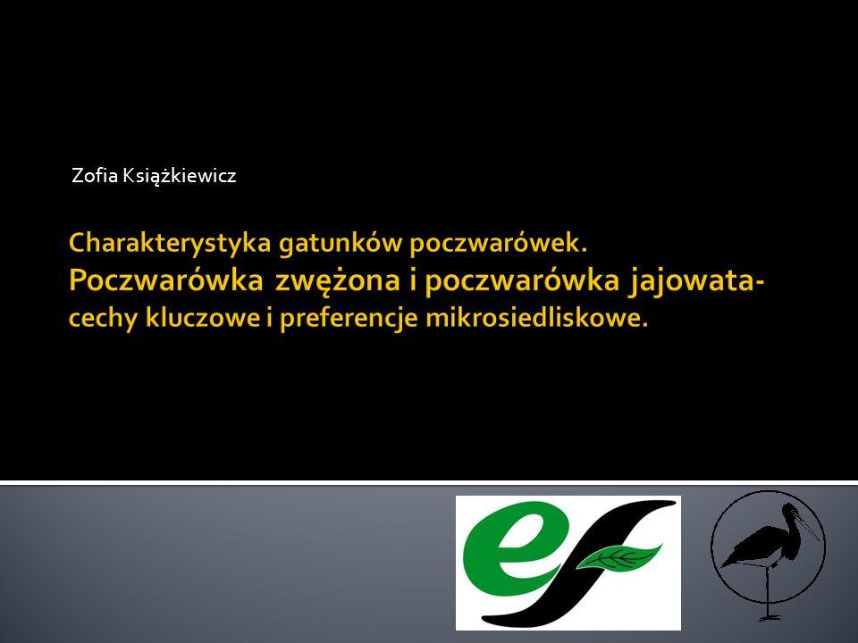 Zofia Książkiewicz Charakterystyka gatunków poczwarówek.