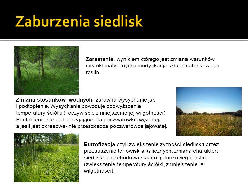 Zaburzenia siedlisk Zarastanie, wynikiem którego jest zmiana warunków mikroklimatycznych i modyfikacja składu gatunkowego roślin.