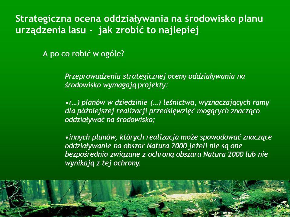 Strategiczna ocena oddziaływania na środowisko planu urządzenia lasu - jak zrobić to najlepiej