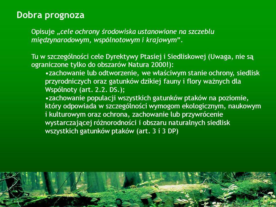 """Dobra prognoza Opisuje """"cele ochrony środowiska ustanowione na szczeblu międzynarodowym, wspólnotowym i krajowym ."""