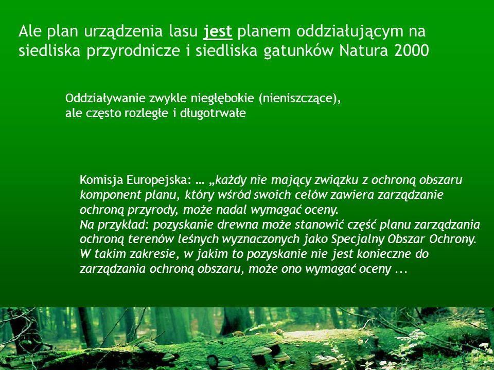 Ale plan urządzenia lasu jest planem oddziałującym na siedliska przyrodnicze i siedliska gatunków Natura 2000