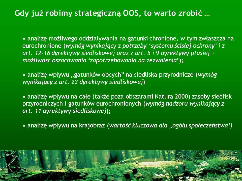 Gdy już robimy strategiczną OOS, to warto zrobić …