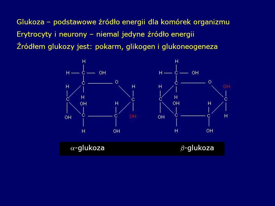 Glukoza – podstawowe źródło energii dla komórek organizmu