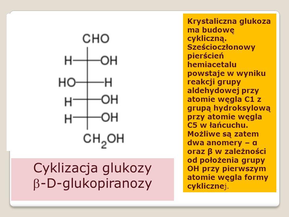 Cyklizacja glukozy b-D-glukopiranozy