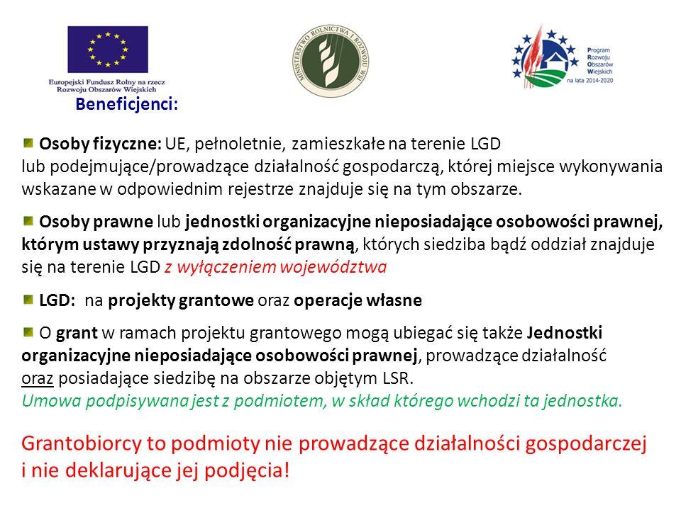 LGD: na projekty grantowe oraz operacje własne
