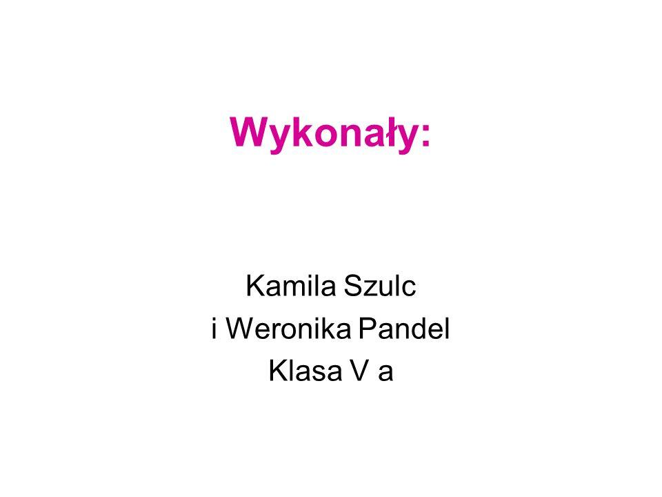 Kamila Szulc i Weronika Pandel Klasa V a