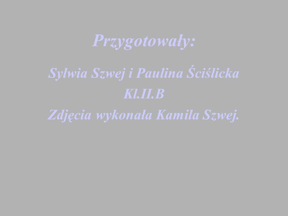 Sylwia Szwej i Paulina Ściślicka Zdjęcia wykonała Kamila Szwej.