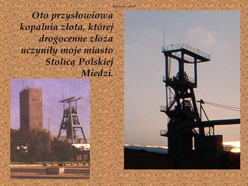 Żyła złotej miedziOto przysłowiowa kopalnia złota, której drogocenne złoża uczyniły moje miasto Stolicą Polskiej Miedzi.