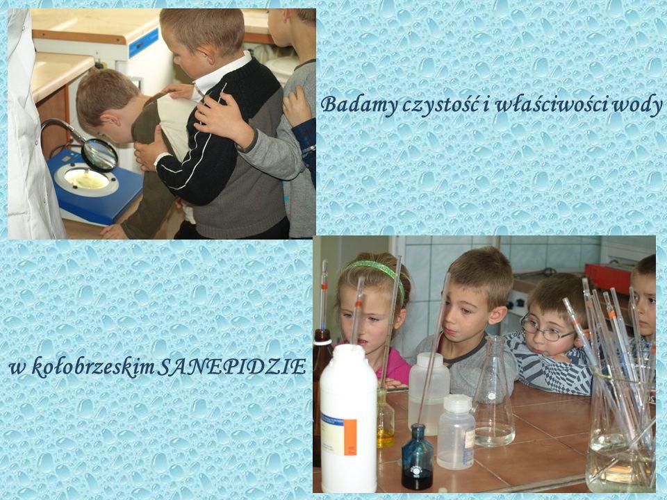 Badamy czystość i właściwości wody