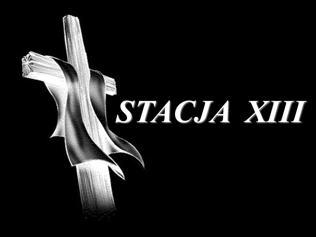 STACJA XIII
