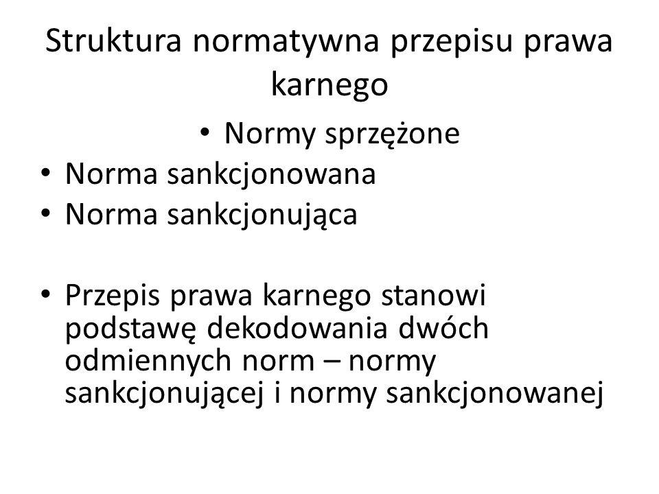 Struktura normatywna przepisu prawa karnego