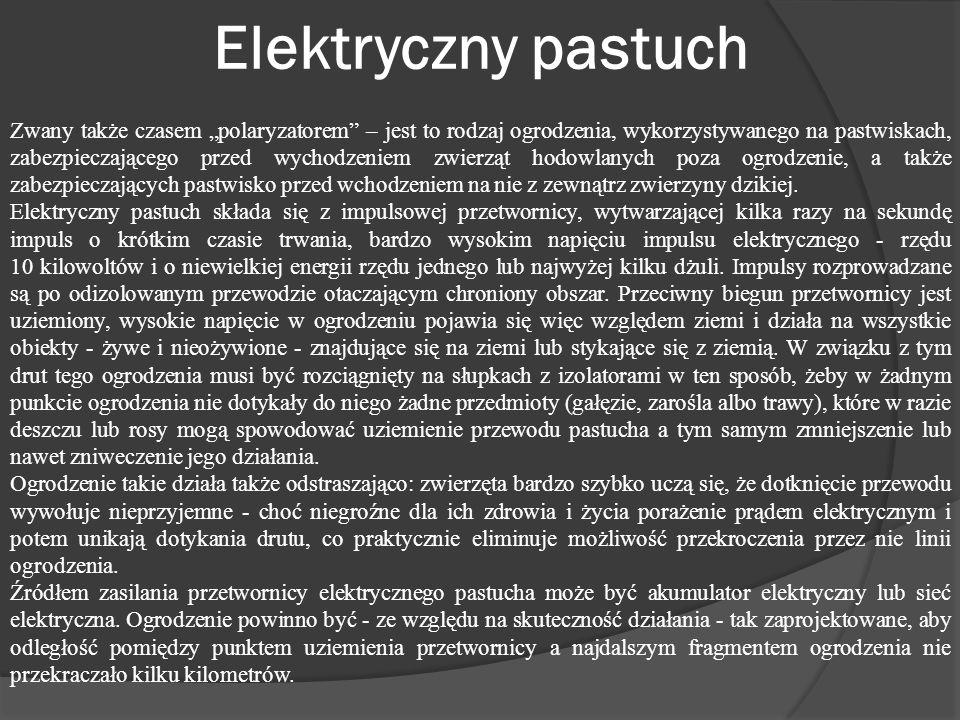 Elektryczny pastuch