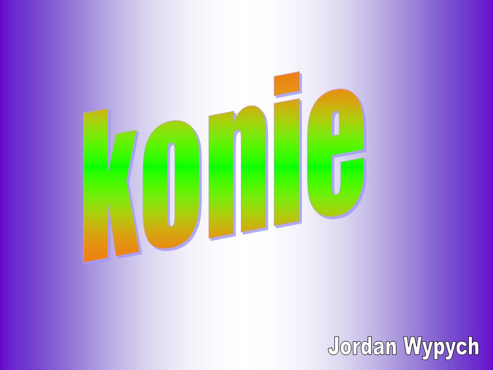 konie Jordan Wypych