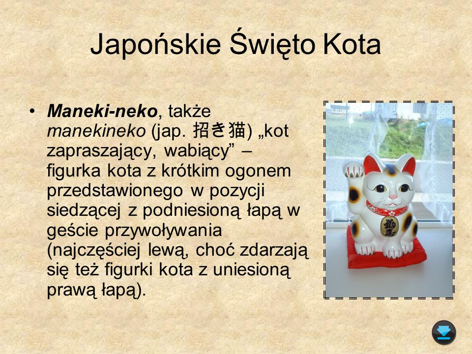 Japońskie Święto Kota