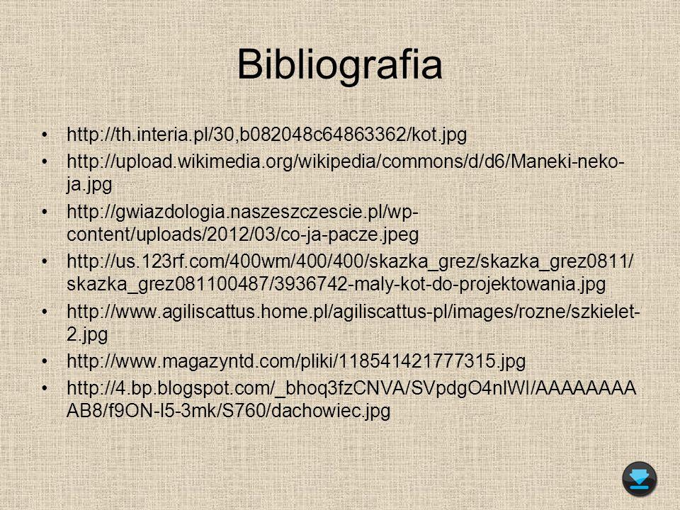 Bibliografia http://th.interia.pl/30,b082048c64863362/kot.jpg