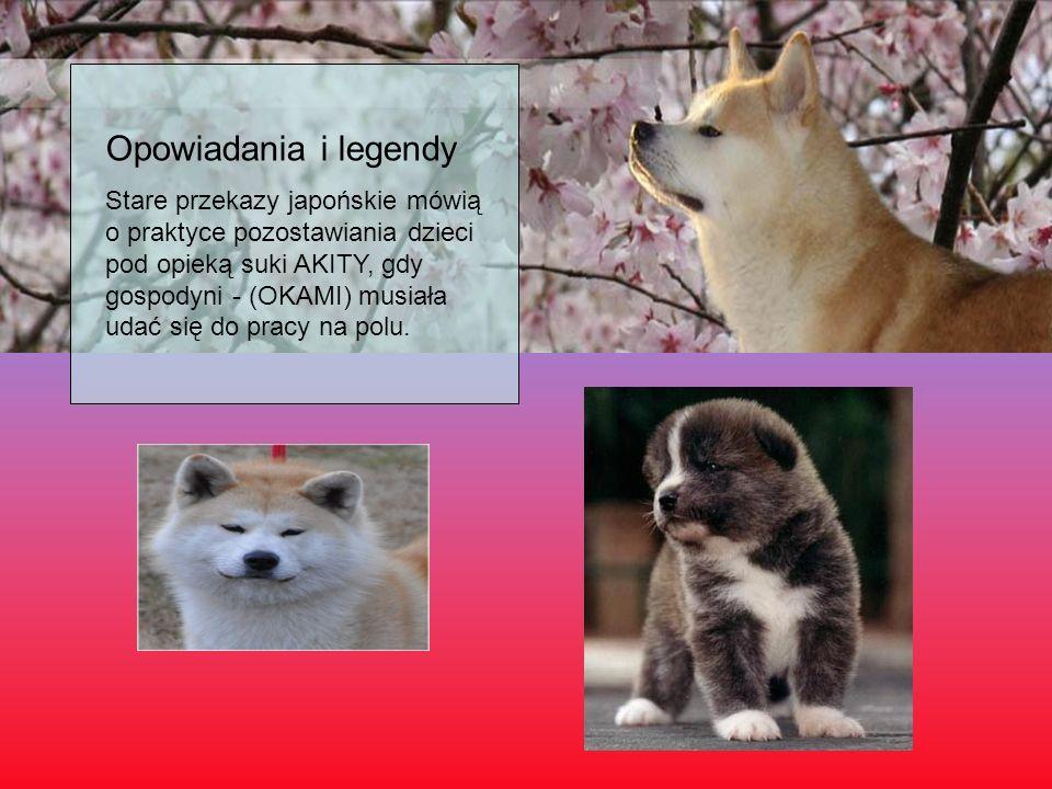 Opowiadania i legendy