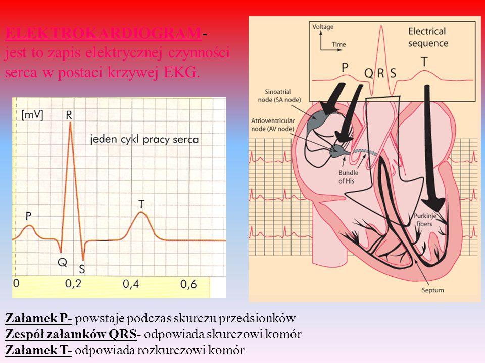 jest to zapis elektrycznej czynności serca w postaci krzywej EKG.