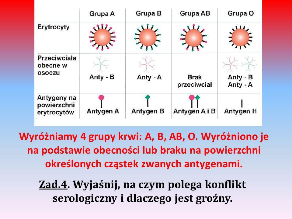 Wyróżniamy 4 grupy krwi: A, B, AB, O