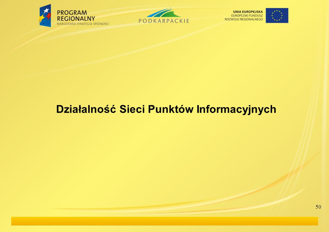 Działalność Sieci Punktów Informacyjnych