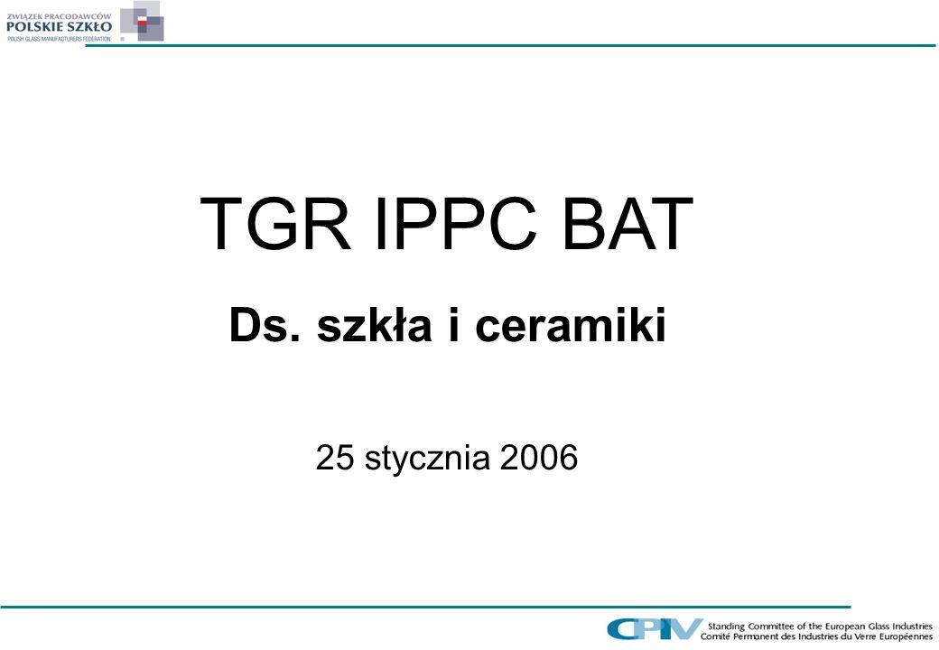 TGR IPPC BAT Ds. szkła i ceramiki 25 stycznia 2006
