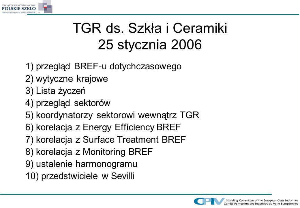 TGR ds. Szkła i Ceramiki 25 stycznia 2006