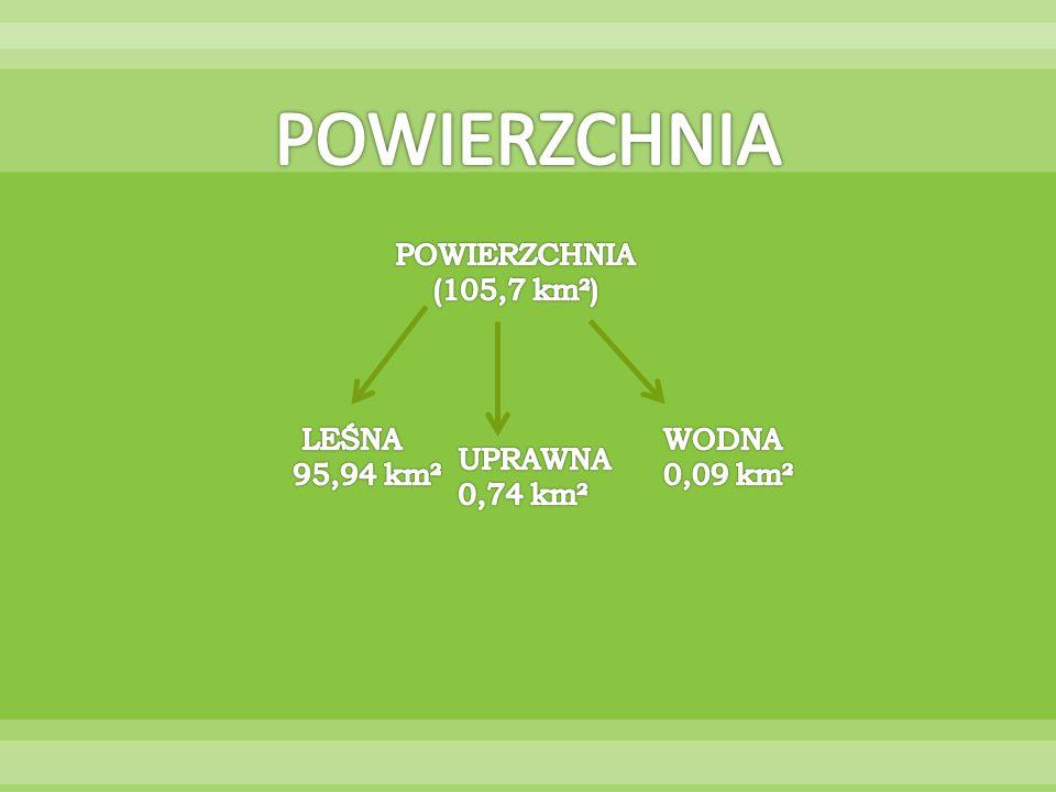 POWIERZCHNIA POWIERZCHNIA (105,7 km²) 95,94 km² WODNA 0,09 km² UPRAWNA