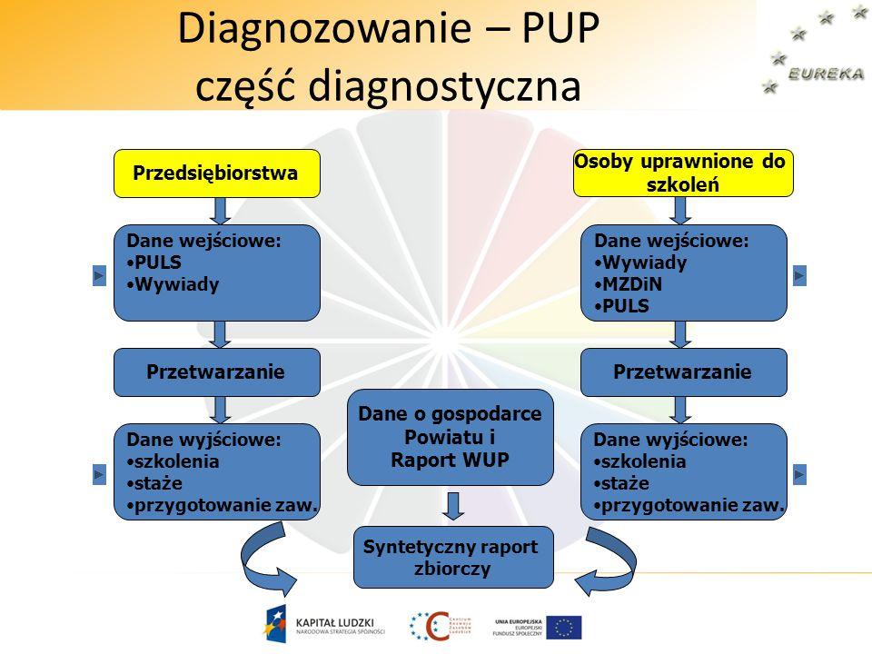 Diagnozowanie – PUP część diagnostyczna