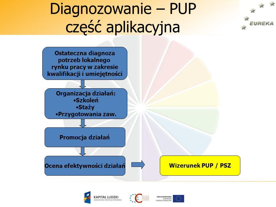Diagnozowanie – PUP część aplikacyjna