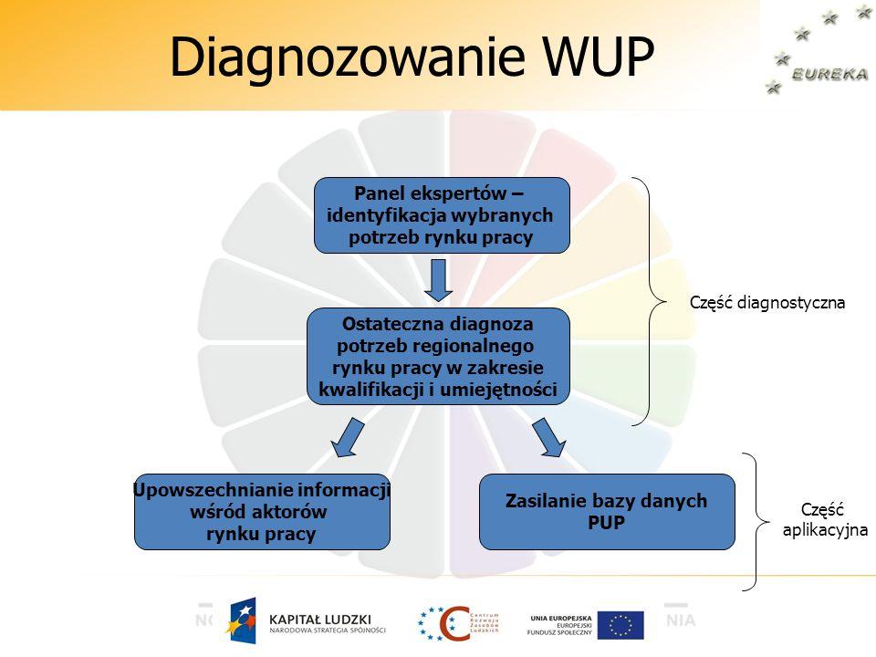 Diagnozowanie WUP Panel ekspertów – identyfikacja wybranych