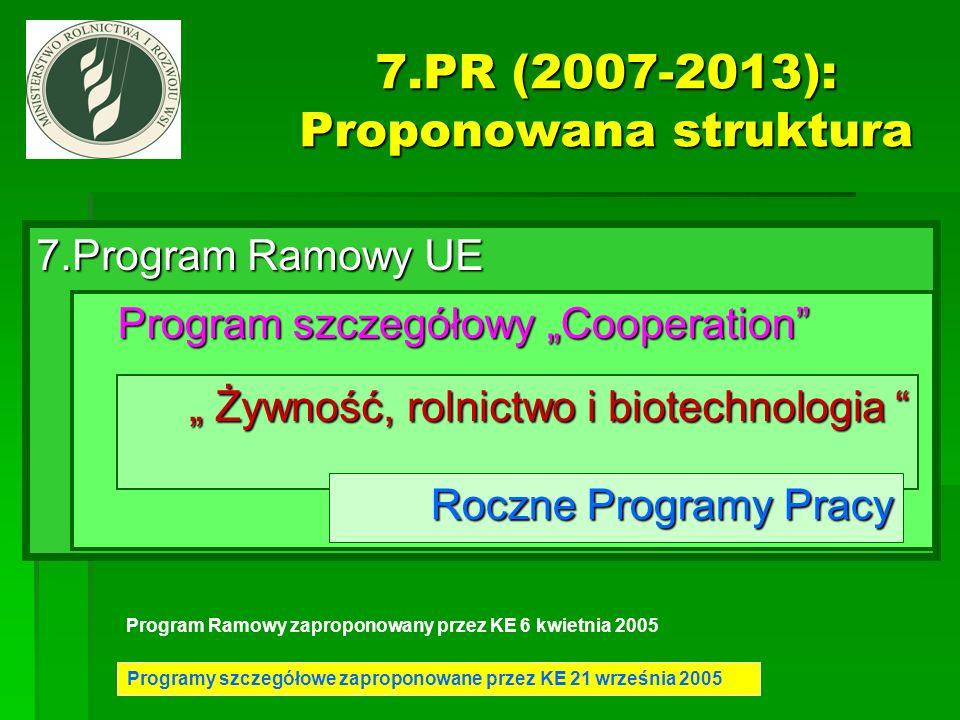 7.PR (2007-2013): Proponowana struktura
