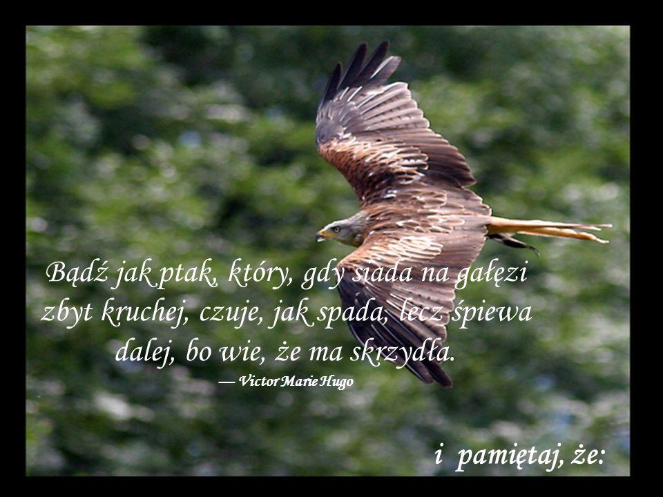 Bądź jak ptak, który, gdy siada na gałęzi zbyt kruchej, czuje, jak spada, lecz śpiewa dalej, bo wie, że ma skrzydła.