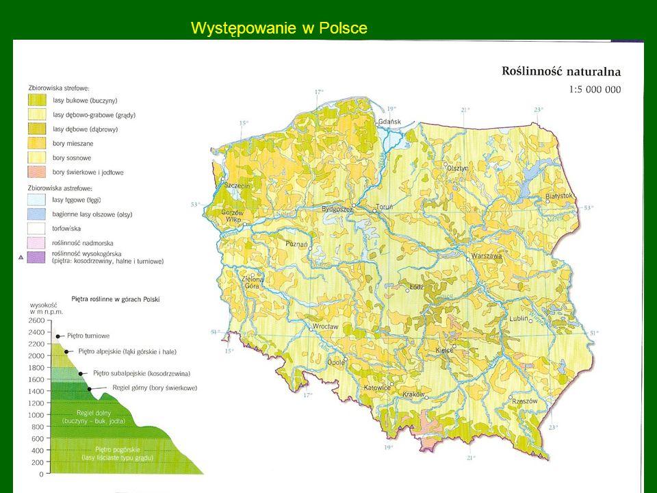 Występowanie w Polsce