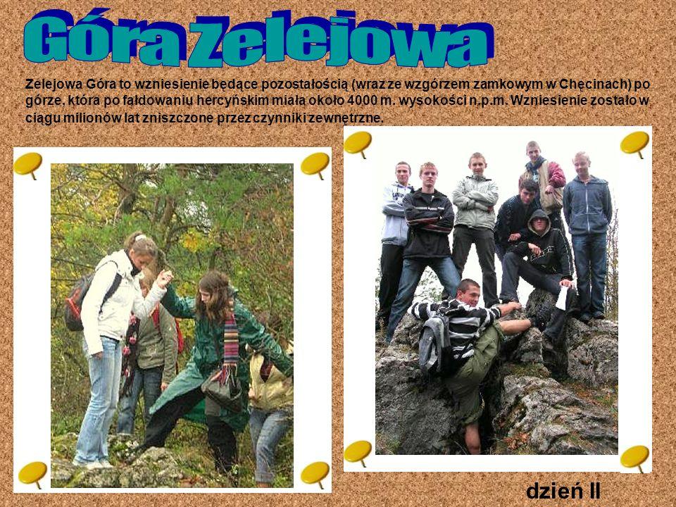 Góra Zelejowa