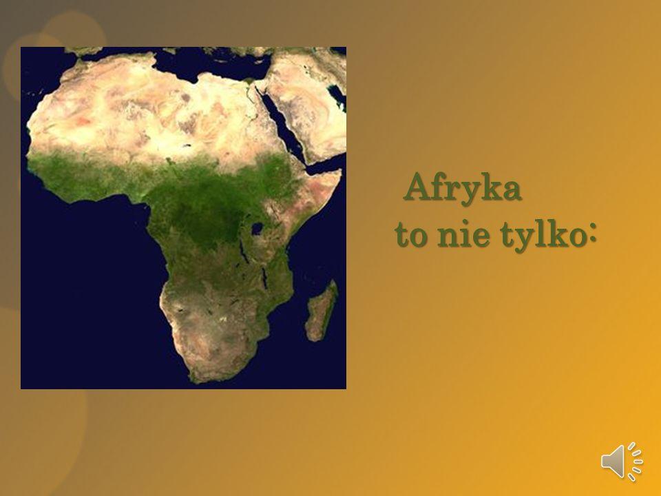 Afryka to nie tylko: