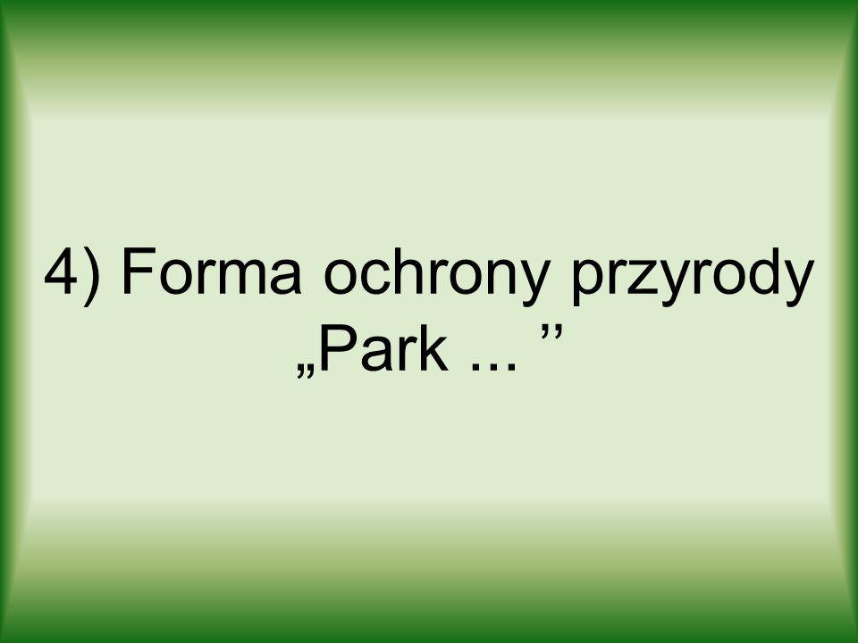 """4) Forma ochrony przyrody """"Park ... ''"""