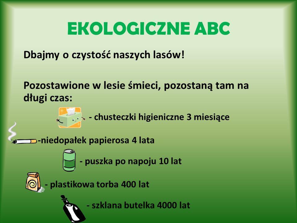 EKOLOGICZNE ABC Dbajmy o czystość naszych lasów!